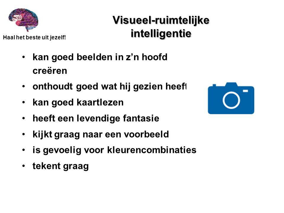 Visueel-ruimtelijke intelligentie