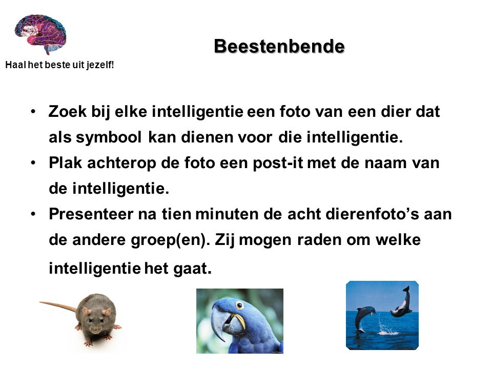 Beestenbende Zoek bij elke intelligentie een foto van een dier dat als symbool kan dienen voor die intelligentie.