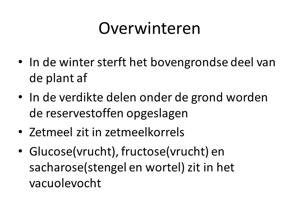 Overwinteren In de winter sterft het bovengrondse deel van de plant af