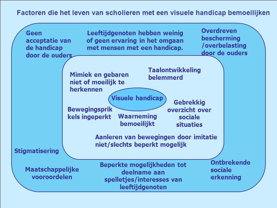 Factoren die het leven van scholieren met een visuele handicap bemoeilijken