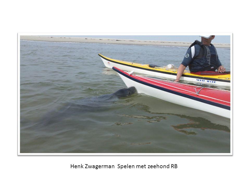 Henk Zwagerman Spelen met zeehond RB