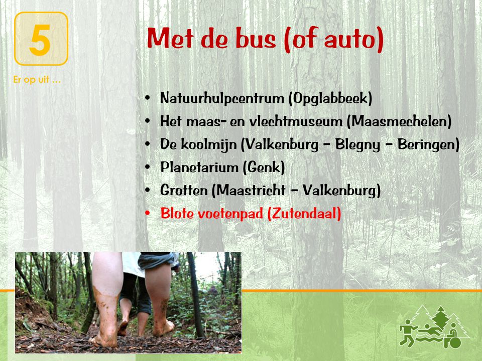 Met de bus (of auto) Natuurhulpcentrum (Opglabbeek)