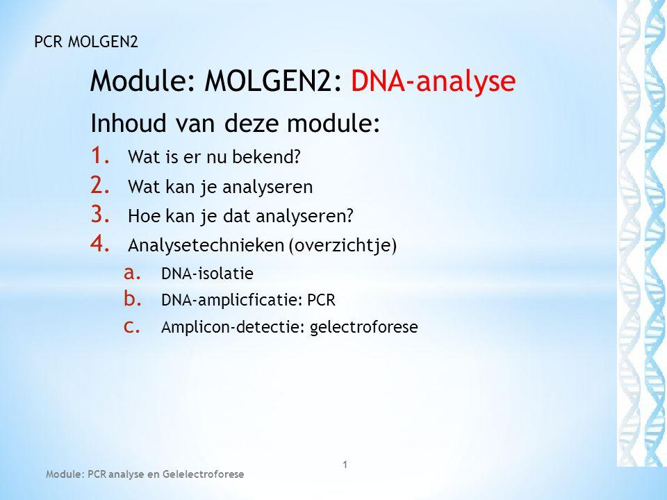 Module: MOLGEN2: DNA-analyse