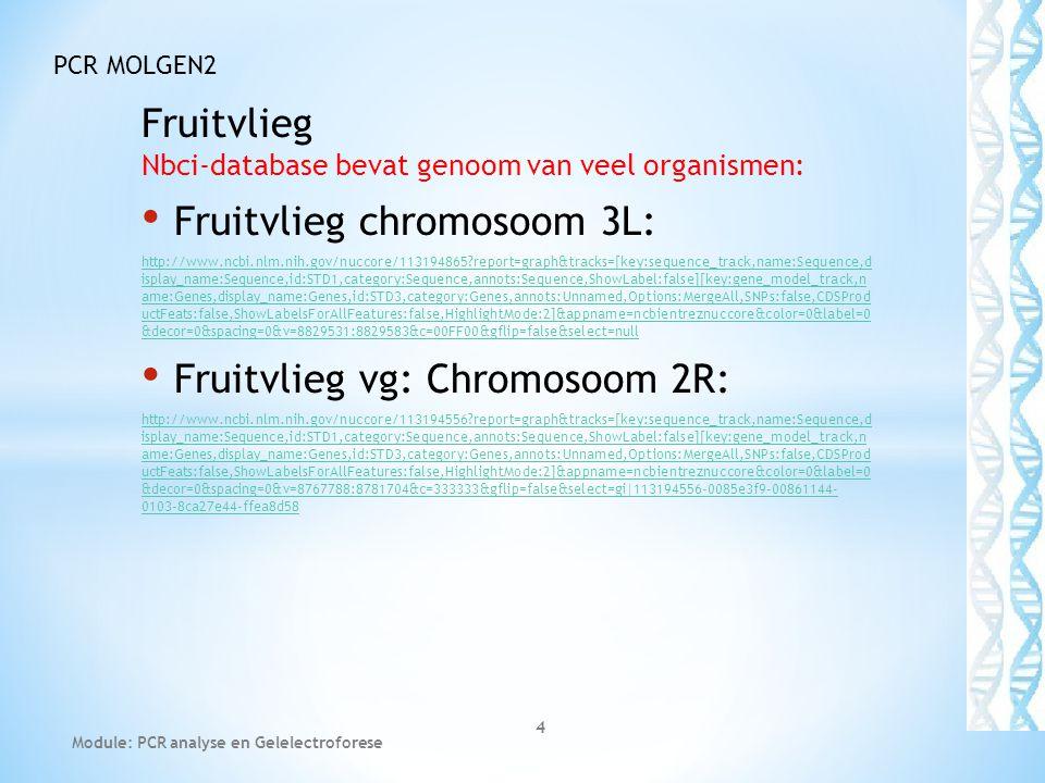 Fruitvlieg Nbci-database bevat genoom van veel organismen: