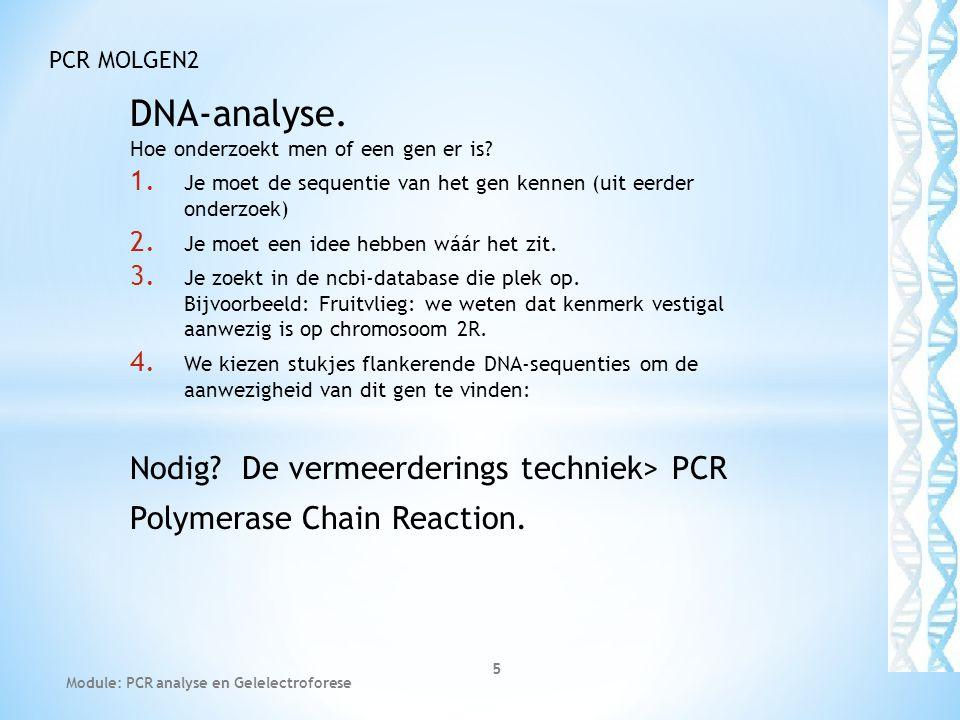 DNA-analyse. Hoe onderzoekt men of een gen er is