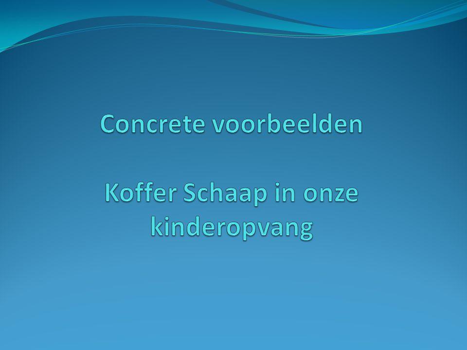 Concrete voorbeelden Koffer Schaap in onze kinderopvang