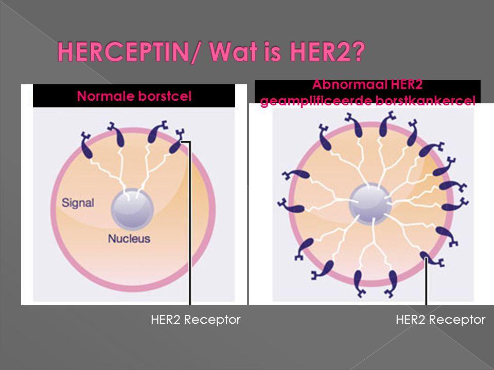 Abnormaal HER2 geamplificeerde borstkankercel