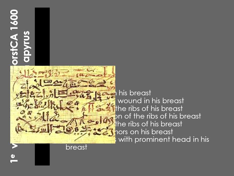 1e vermelding van borstCA 1600 BC : Edwin Smith apyrus