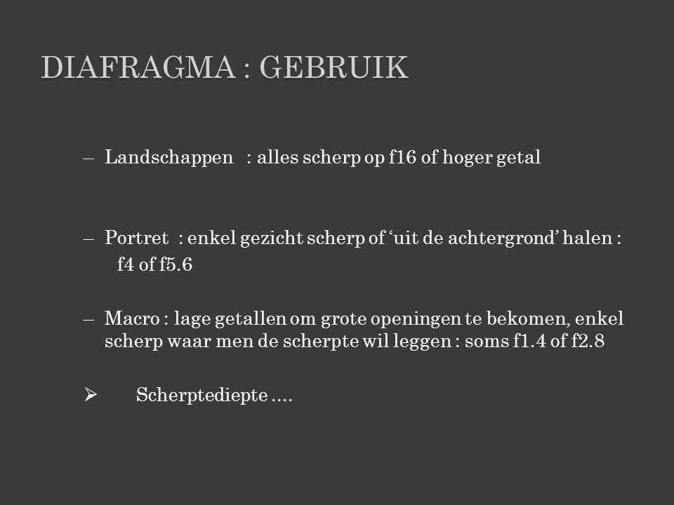 Diafragma : gebruik Landschappen : alles scherp op f16 of hoger getal