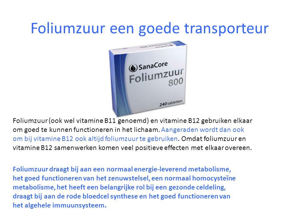 Foliumzuur een goede transporteur