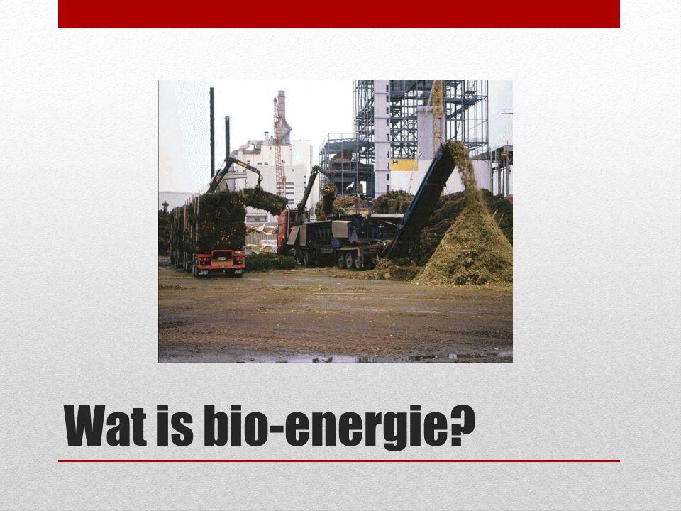 Wat is bio-energie