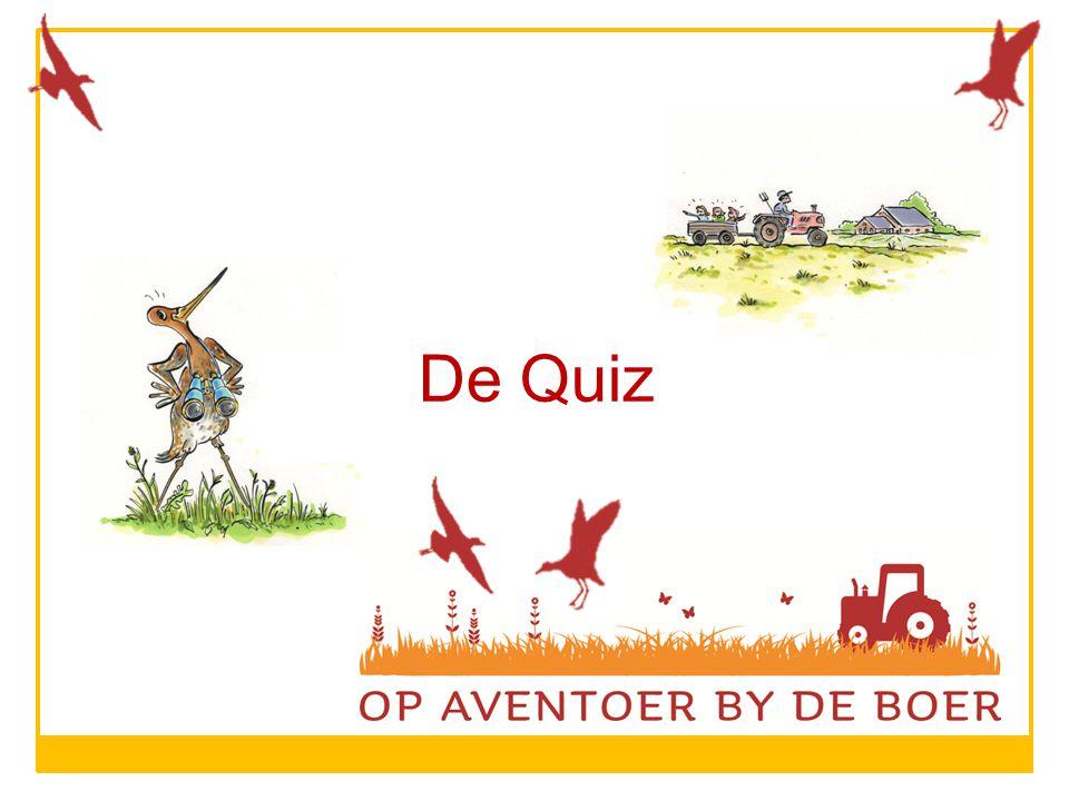 De Quiz