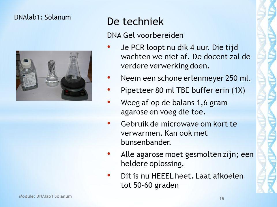 De techniek DNA Gel voorbereiden