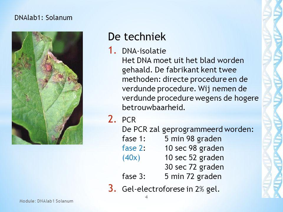 DNAlab1: Solanum De techniek.