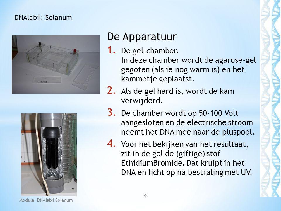 DNAlab1: Solanum De Apparatuur. De gel-chamber. In deze chamber wordt de agarose-gel gegoten (als ie nog warm is) en het kammetje geplaatst.