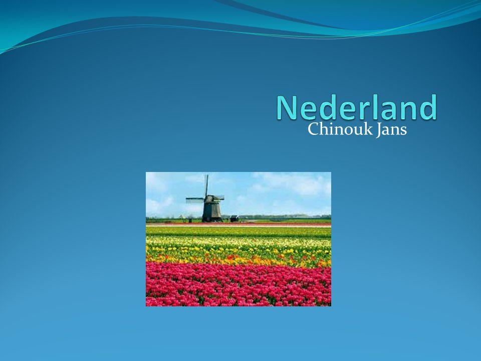 Nederland Chinouk Jans