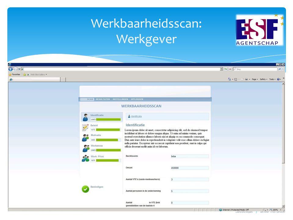 Werkbaarheidsscan: Werkgever