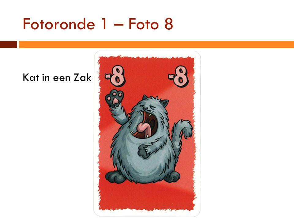 Fotoronde 1 – Foto 8 Kat in een Zak