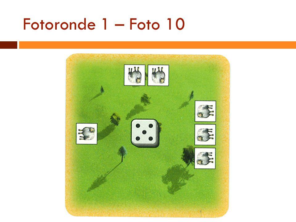 Fotoronde 1 – Foto 10