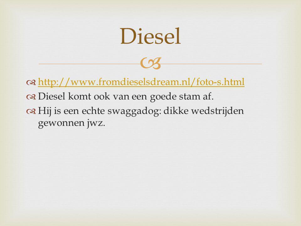 Diesel http://www.fromdieselsdream.nl/foto-s.html