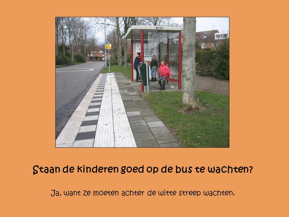 Staan de kinderen goed op de bus te wachten