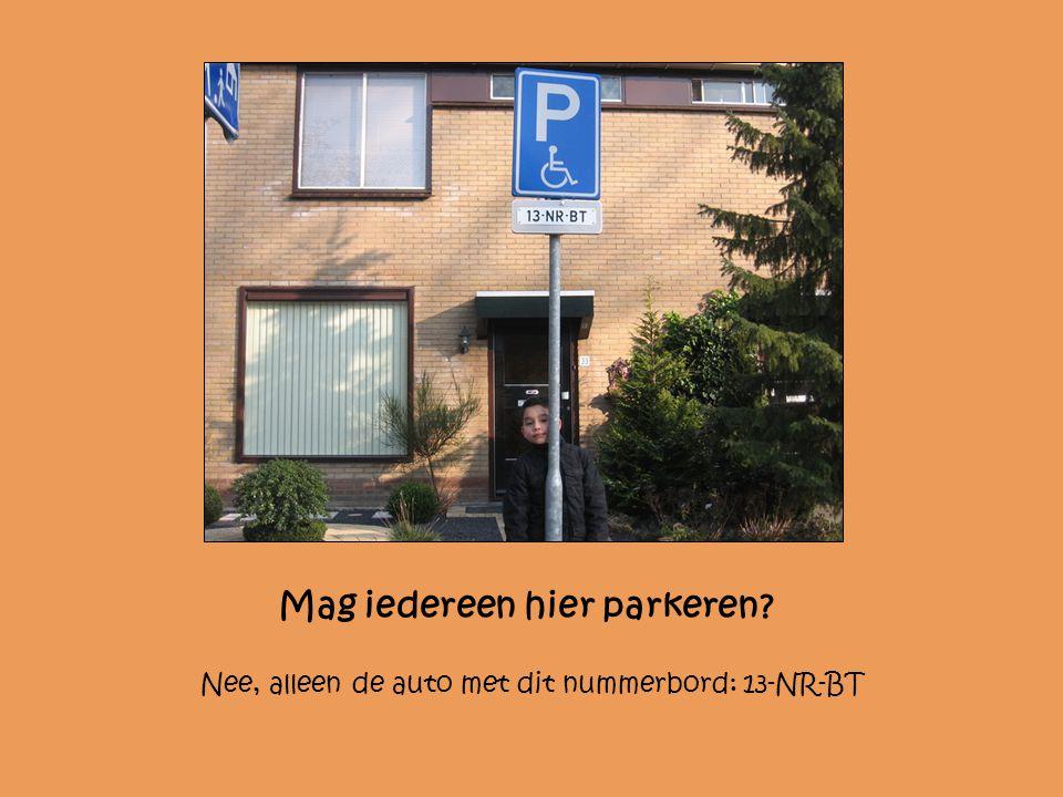 Mag iedereen hier parkeren