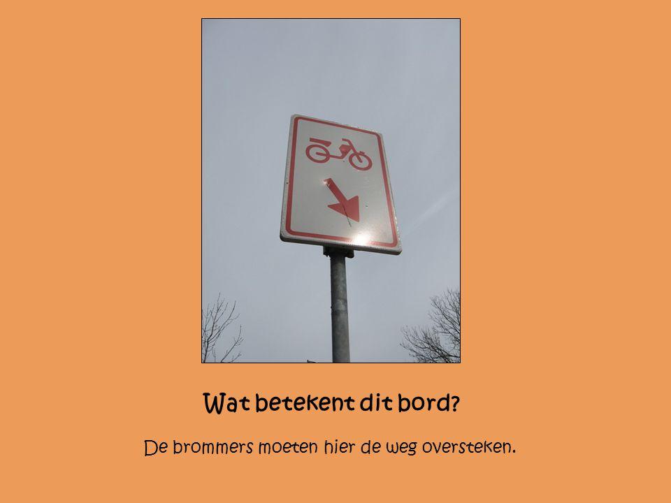 Wat betekent dit bord De brommers moeten hier de weg oversteken.