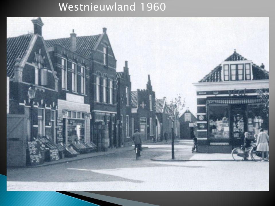 Westnieuwland 1960