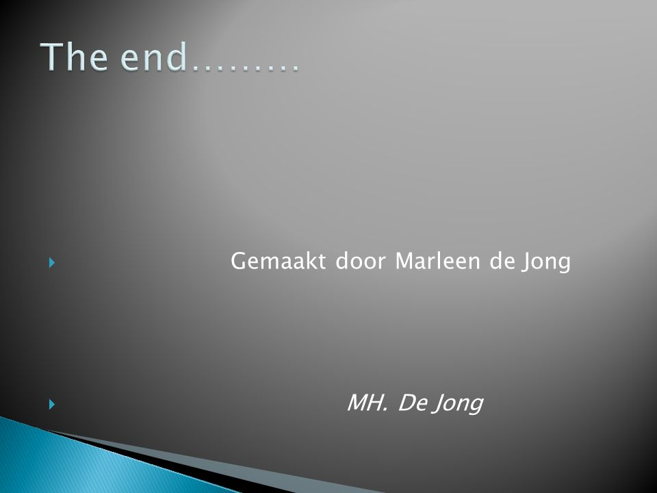 The end……… Gemaakt door Marleen de Jong MH. De Jong