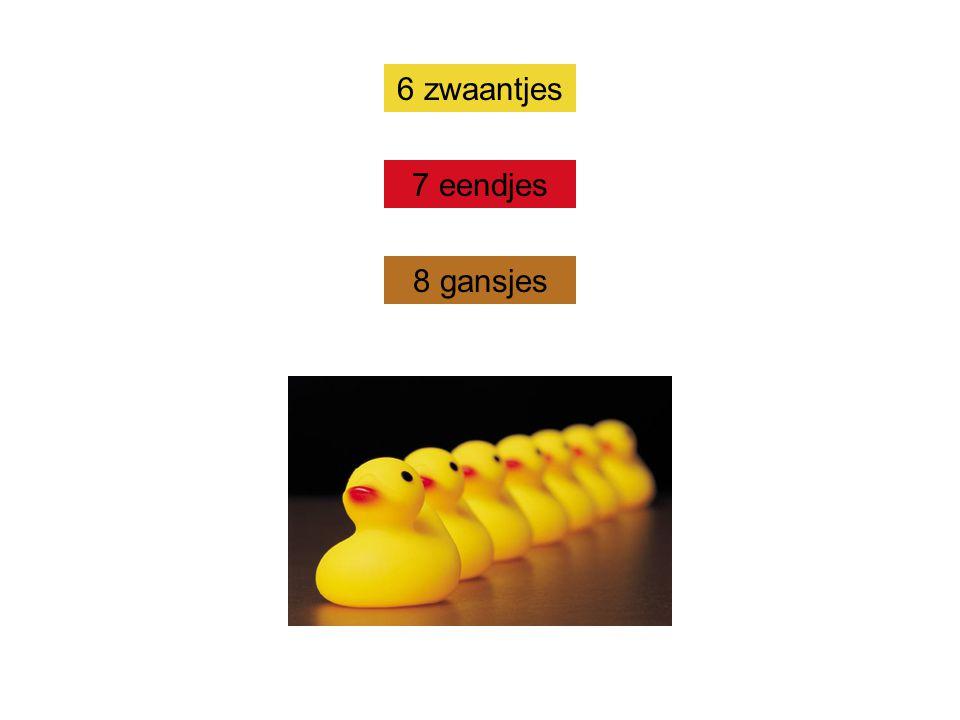 6 zwaantjes 7 eendjes 8 gansjes