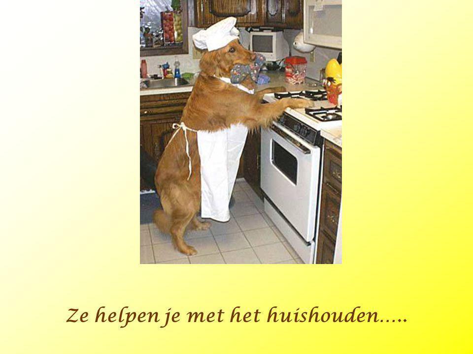 Ze helpen je met het huishouden…..