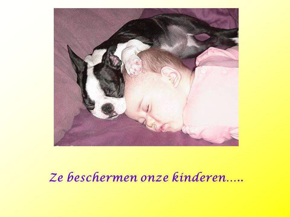Ze beschermen onze kinderen…..