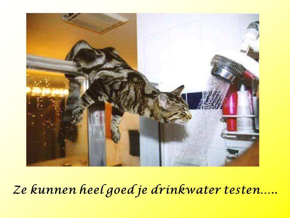 Ze kunnen heel goed je drinkwater testen…..