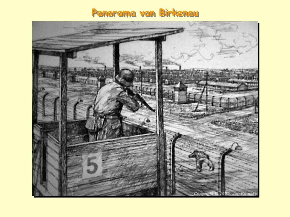 Panorama van Birkenau
