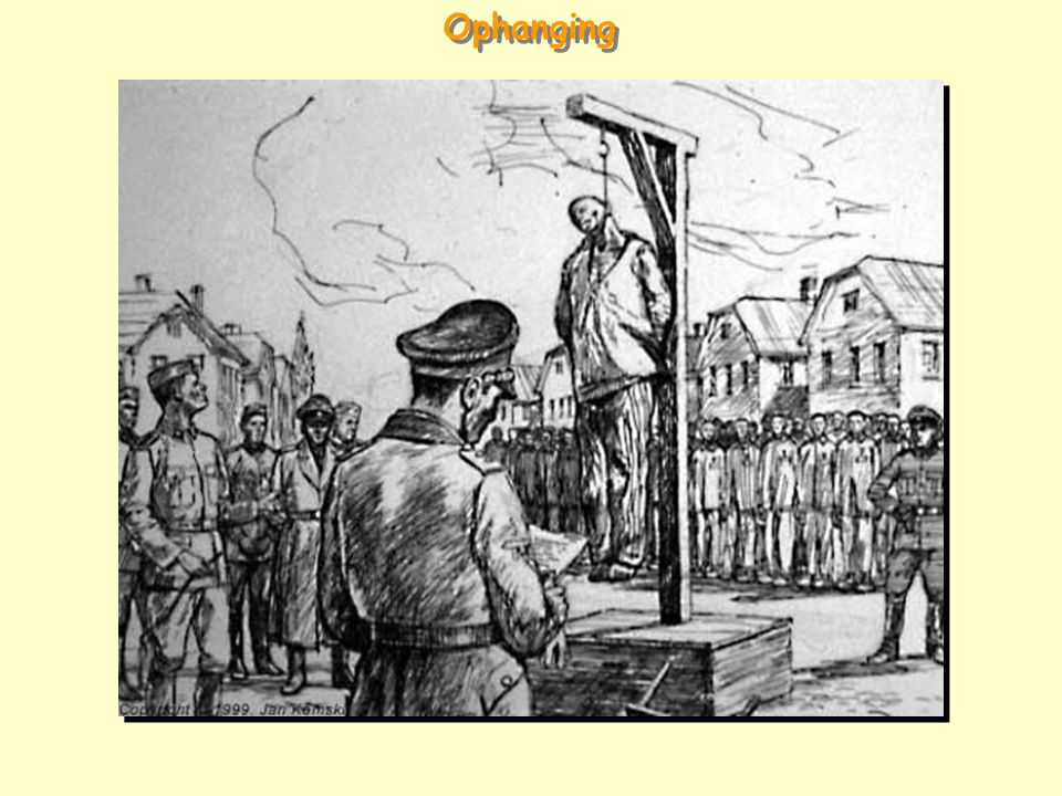 Ophanging