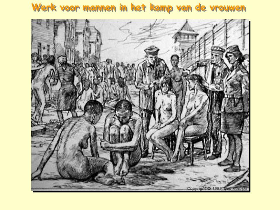 Werk voor mannen in het kamp van de vrouwen