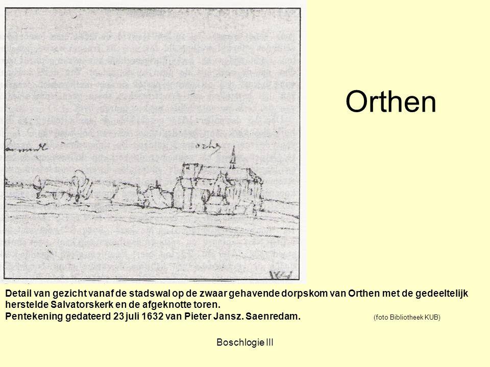 Orthen Detail van gezicht vanaf de stadswal op de zwaar gehavende dorpskom van Orthen met de gedeeltelijk.