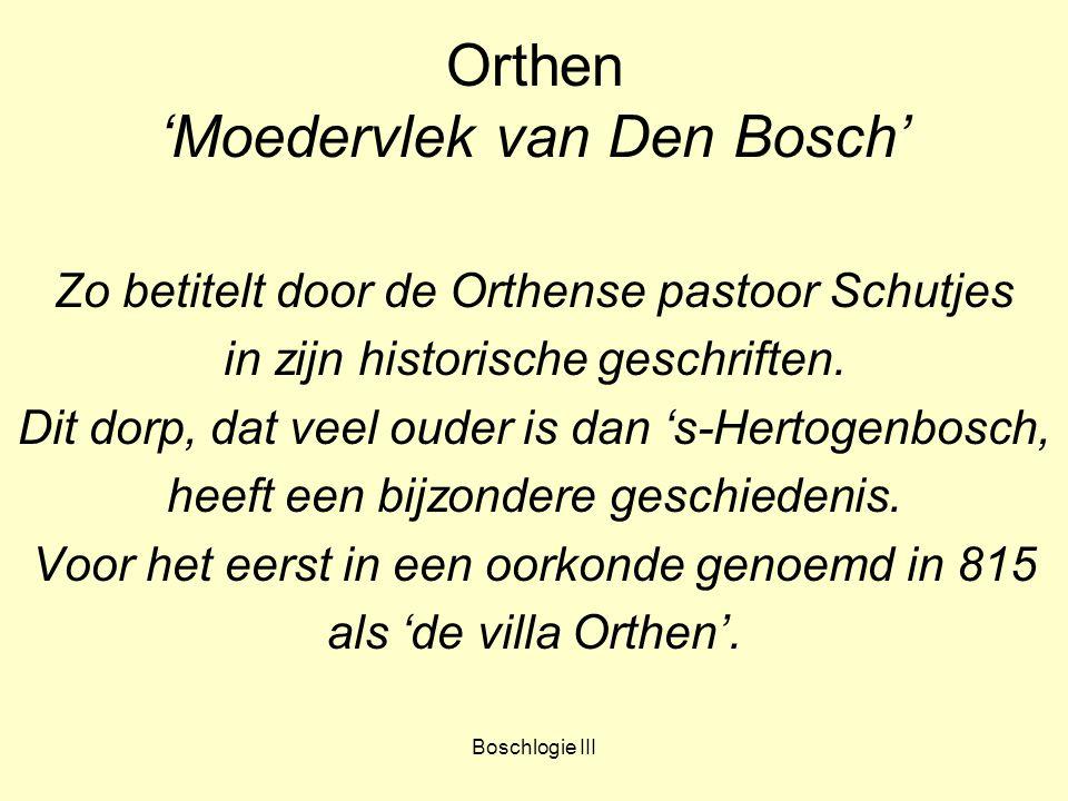 Orthen 'Moedervlek van Den Bosch'