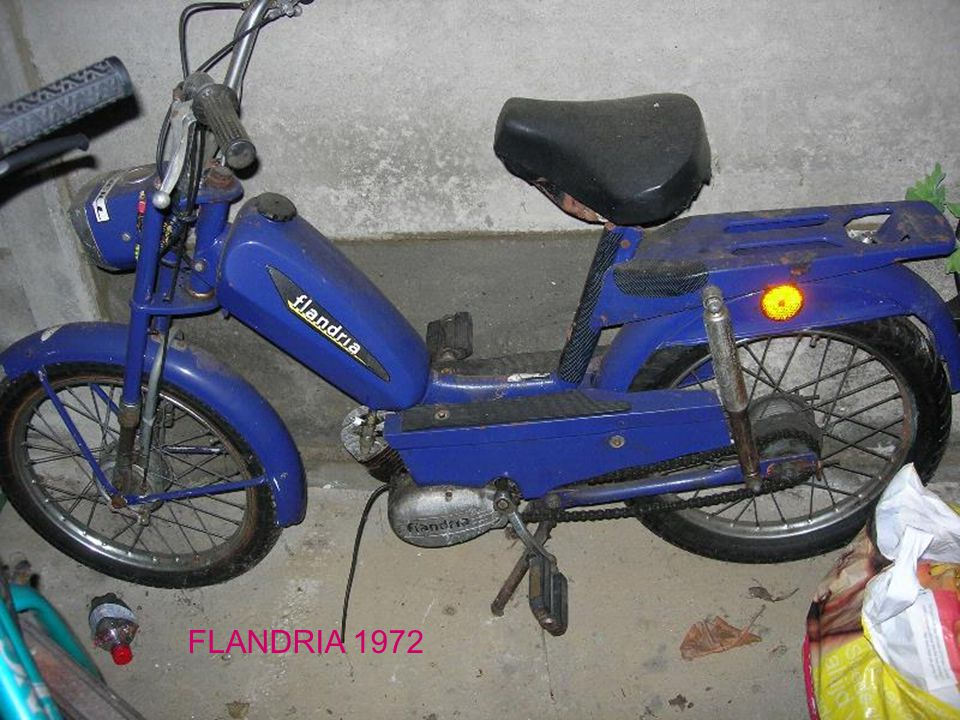 FLANDRIA 1972