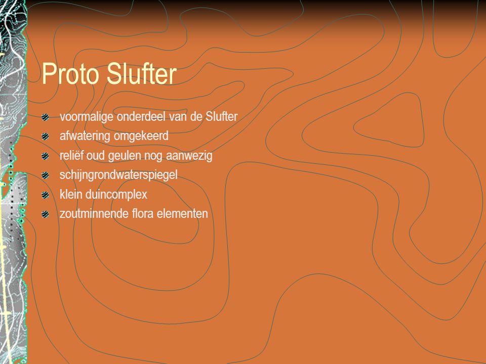 Proto Slufter voormalige onderdeel van de Slufter afwatering omgekeerd