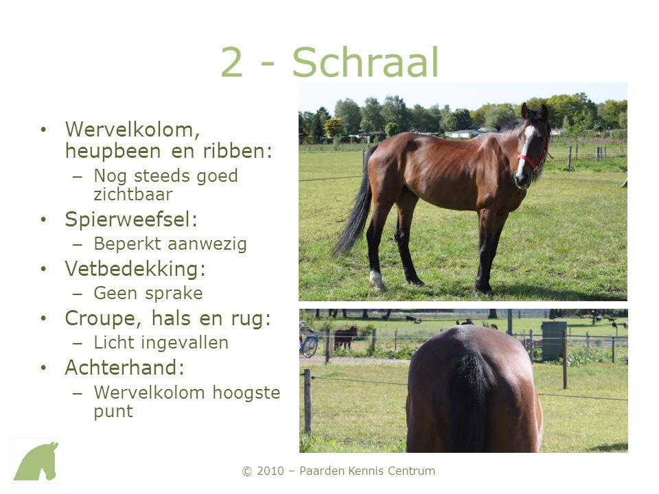 2 - Schraal Wervelkolom, heupbeen en ribben: Spierweefsel: