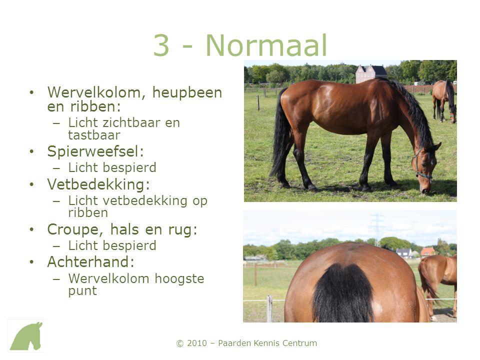3 - Normaal Wervelkolom, heupbeen en ribben: Spierweefsel: