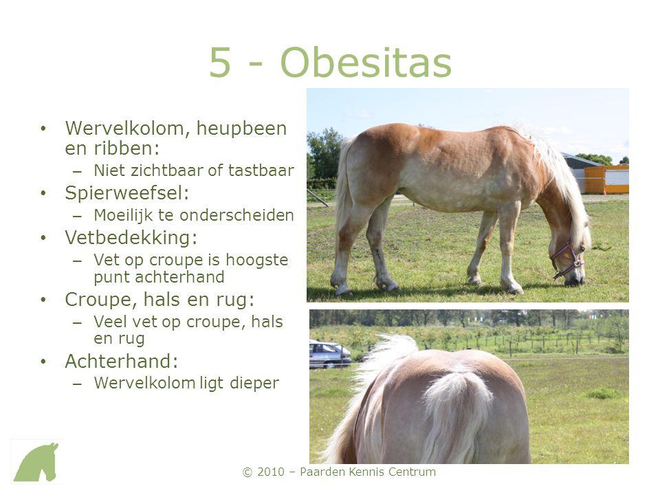 5 - Obesitas Wervelkolom, heupbeen en ribben: Spierweefsel: