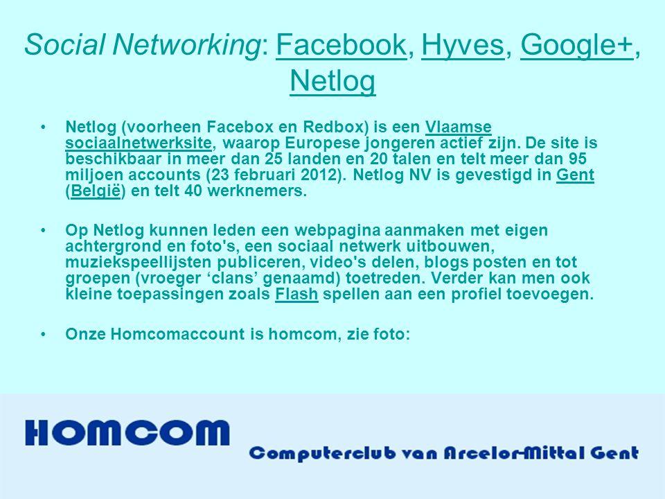 Social Networking: Facebook, Hyves, Google+, Netlog