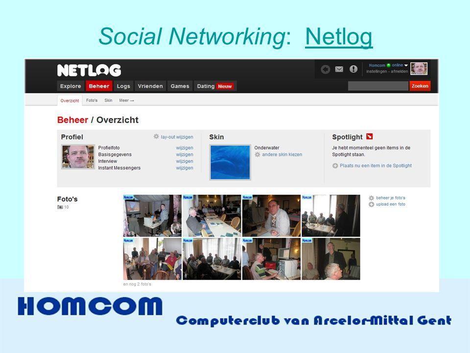 Social Networking: Netlog