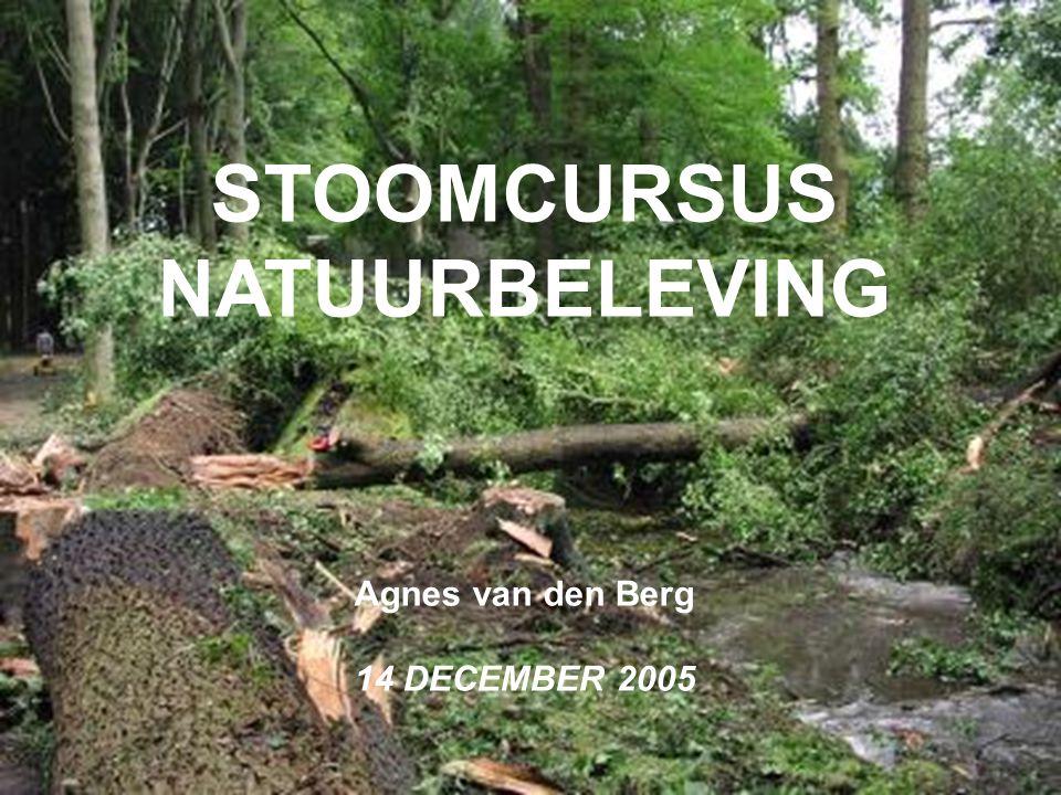 STOOMCURSUS NATUURBELEVING
