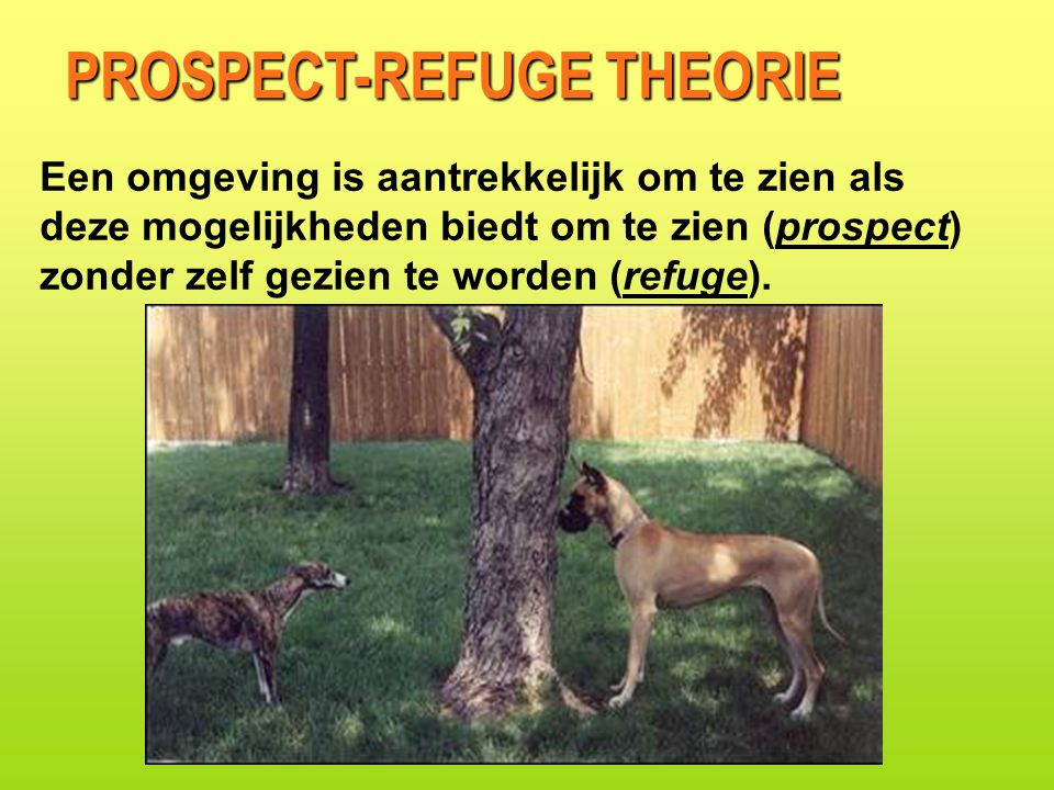 PROSPECT-REFUGE THEORIE
