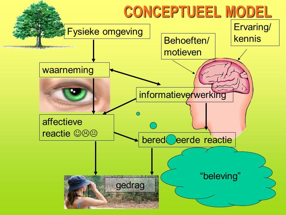 CONCEPTUEEL MODEL Ervaring/kennis Fysieke omgeving Behoeften/motieven