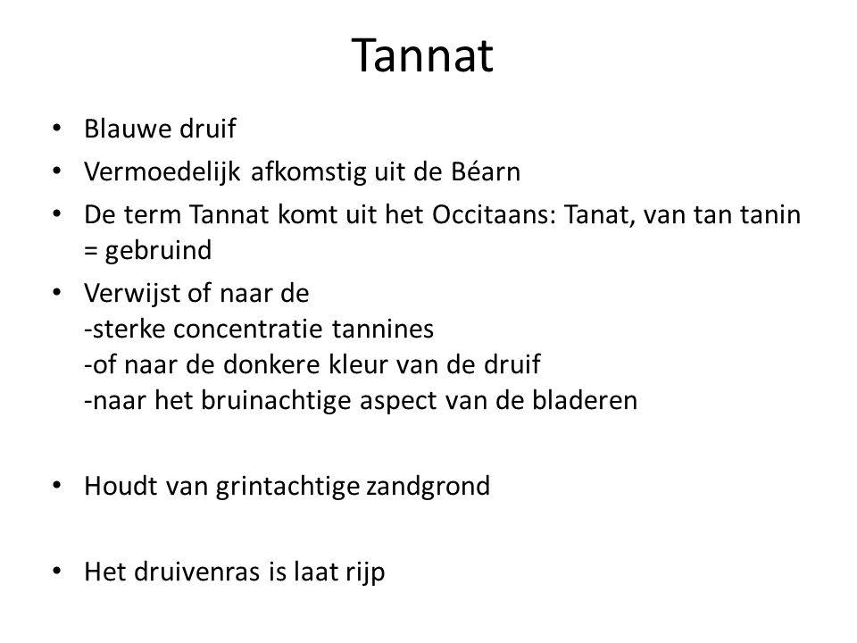 Tannat Blauwe druif Vermoedelijk afkomstig uit de Béarn