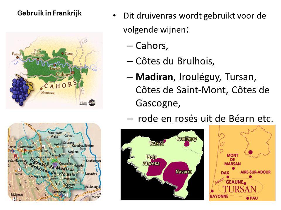 Madiran, Irouléguy, Tursan, Côtes de Saint-Mont, Côtes de Gascogne,